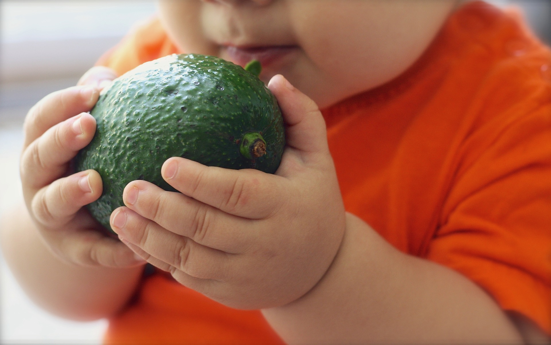 baby leren eten met de rapley methode
