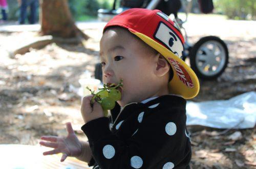 druiven verstikking bij je kind